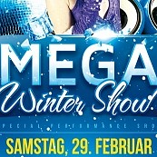 Mega Winter Show Party - Flyer Design für Despri.de